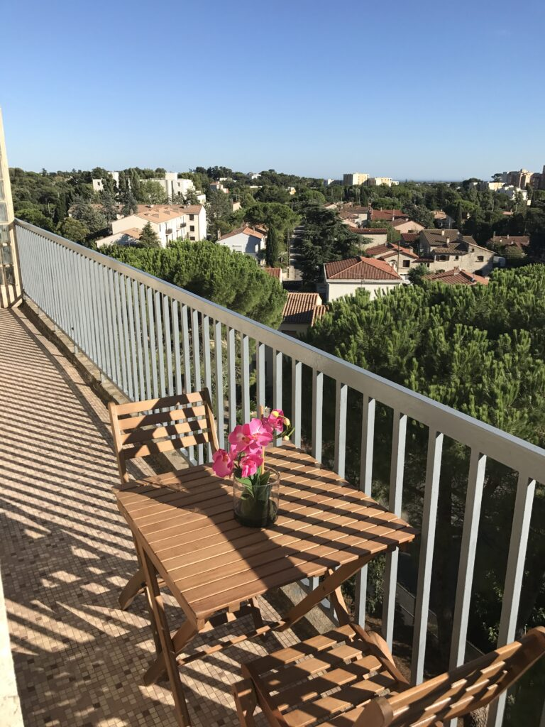 BrightWave Capital - Rental Project in Montpellier France Double Balconies